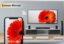 MirrorGo