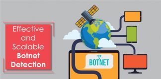 Effective and Scalable Botnet Detection